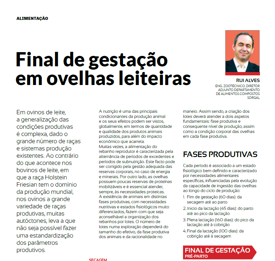 Revista Ruminantes