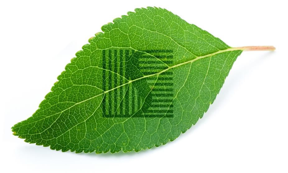 O que é um Sistema de Gestão Ambiental (SGA)?