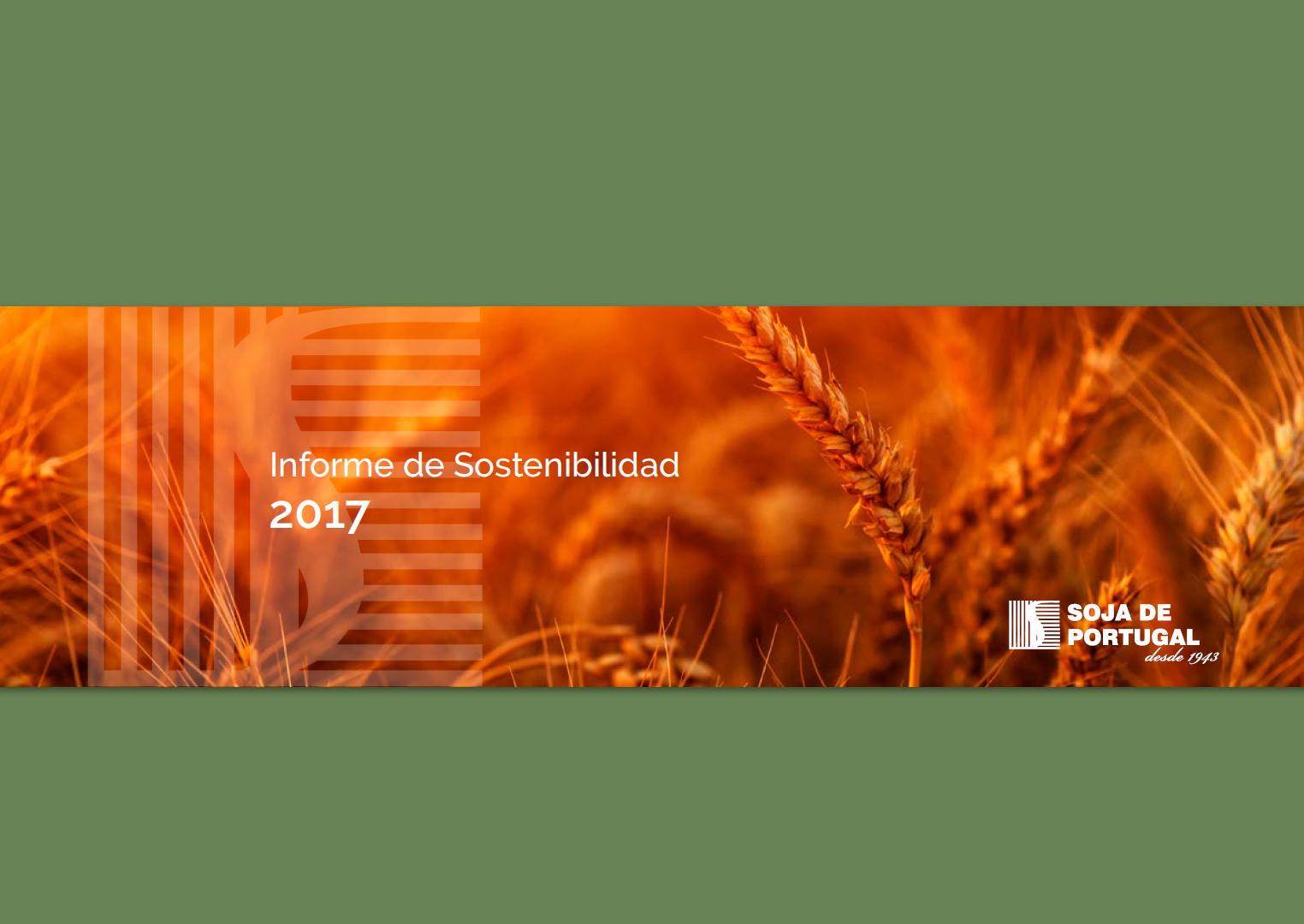 Informe de Sostenibilidad 2017