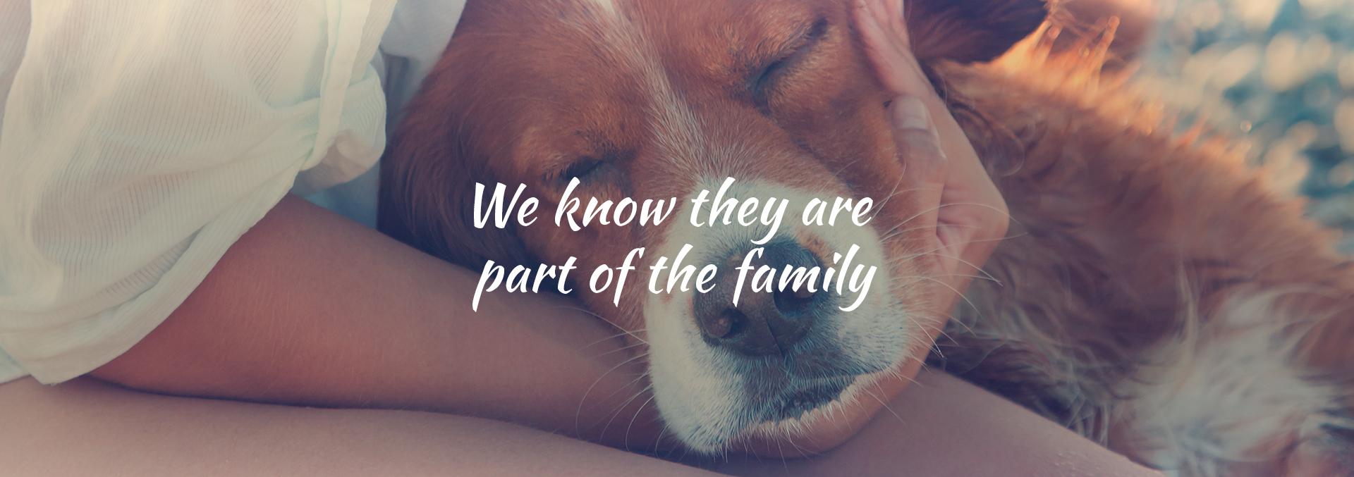 Nós sabemos