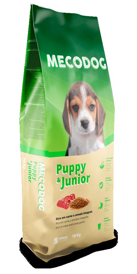 Puppy and Junior